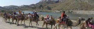 paseo en camello, antes de disfrutar de la granja y darles de comer