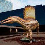 Exposición de dinosaurios «Spinosaurus, el gigante perdido del Cretáceo», en Barcelona.