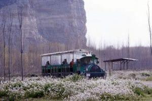 visitar el paraje natural en un tren, diversión para los más pequeños