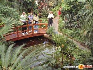 visitas guiadas, diversión y disfrutar de la naturaleza que ofrece el mariposario