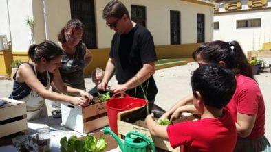 Divertido taller familiar de huerto urbano en m laga - Huerto urbano malaga ...