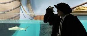 Magallanes durante su viaje conoció mundos, culturas y especies nuevas