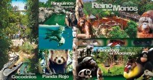 una gran parque donde disfrutar de diferentes actividades y de animales al aire libre durante el recorrido al parque