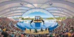el único zoo o acuario dónde poder disfrutar de un increible espectáculo de orcas