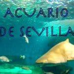 Diversión en familia en el Acuario de Sevilla.