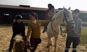 conocer y cuidar a los caballos y al poni Jordi