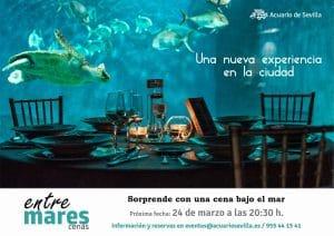 cena romántica bajo las mirada de los tiburones en el Acuario de Sevilla