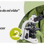 Campamento de verano de artes plásticas en Campus Promete en Pamplona.
