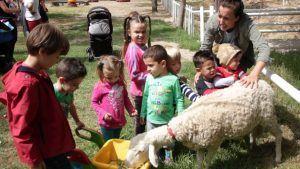 en la granja escuela aprenderán y conocerán el trabajo de los establos y los diferentes animales