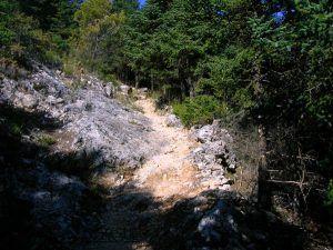 ruta circular con pocos desniveles