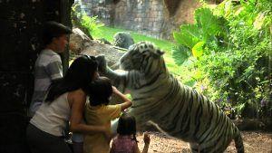 animales y diversión en Bioparc para los pequeños exploradores