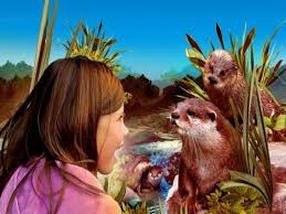 el oasis de las nutrias, un lugar dónde conocer una especie protegida.