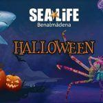 Una visita espeluznante en Sea Life durante Halloween en Benalmádena (Málaga)