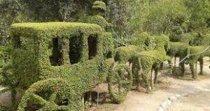 sorprendentes figuras realizadas en el Bosque Encantado