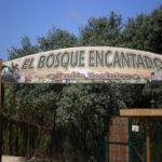 Visita El Bosque Encantado, un jardín de cuento de hadas en Madrid.