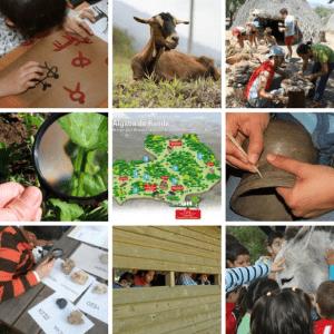 un día en familia en la Algaba, disfrutar de la naturaleza, realizando actividades y talleres