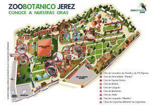 plano del zoobotánico jeréz, diversión para toda la familia