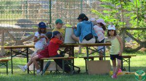 Summer Camp Bilingüe, actividades al aire libre, diversión, multiaventura y mucho más