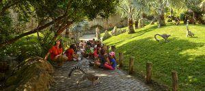Disfrutar y conocer la naturaleza y las especies durante la Expedición por África durante la escuela de verano