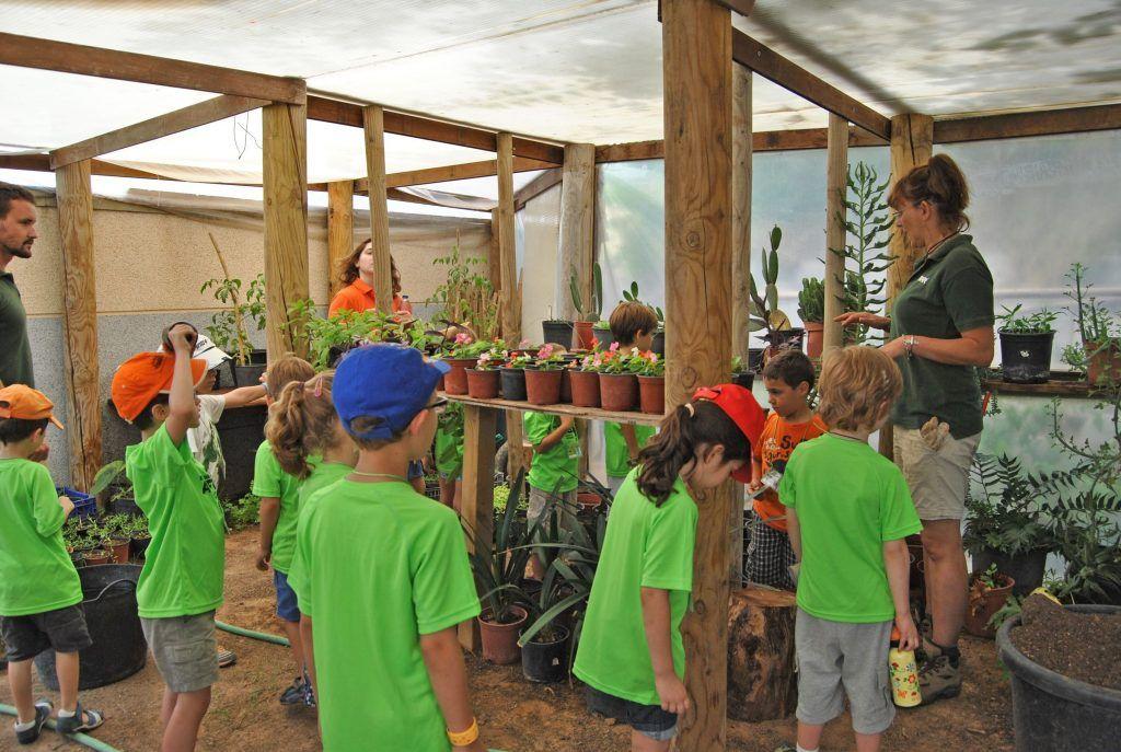 disfrutar de la expedición en plena naturaleza, de las diferentes especies y poder ayudar a alimentarlas en Bioparc