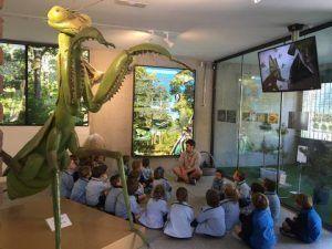 Centro de naturaleza dónde divertirse y aprender visitando y conociendo habitat, alimentación, formas, colores y además de disfrutar de talleres y zonas al aire libre