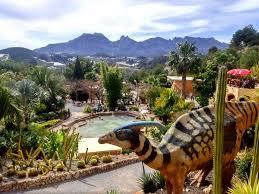 un parque de cactus