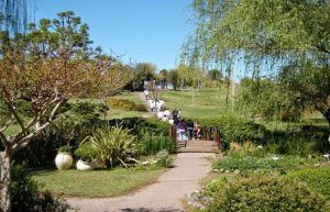 pasear y conocer la fauna que nos rodea por el jardín botánico