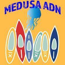 Medusa ADN realiza rutas de senderismo, cayak, visitas turísticas