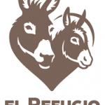 Conservación y cuidado de los burros en el Refugio del Burrito en Fuente de Piedra (Málaga)