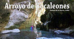 ruta de senderismo por Arroyo Bocaleones, zonas seca y zonas mojadas