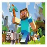 campamento de verano de Minecraft dónde conocer y aprender el mundo java, plugins, desarrollar mods y mucho más.