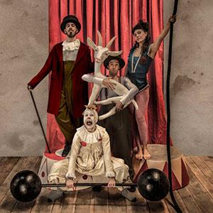 una obra de teatro dónde nos cuentan la magia e historia del circo, con música, títeres, sombras, proyecciones y mucho más