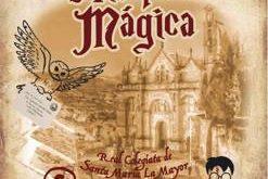 disfrutar en Navidad del mundo mágico de la gran Saga de Harry Potter