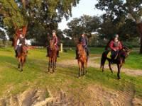 Para la ruta a caballo se usan caballos nobles y con buen trato con las personas, caballos entrenados es equitación