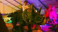 diversión para los más pequeños en la Kids Zone dónde descubrirán todo sobre los dinosaurios